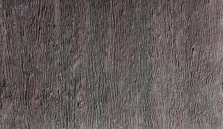 480-pino_vulcano