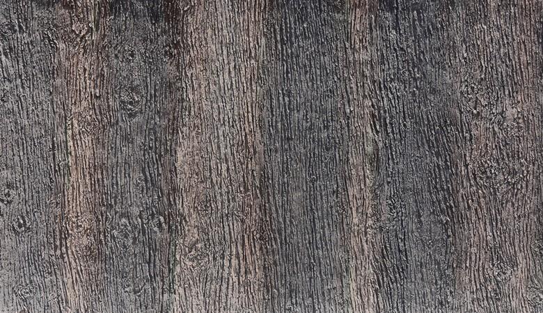 481-pino_foresto