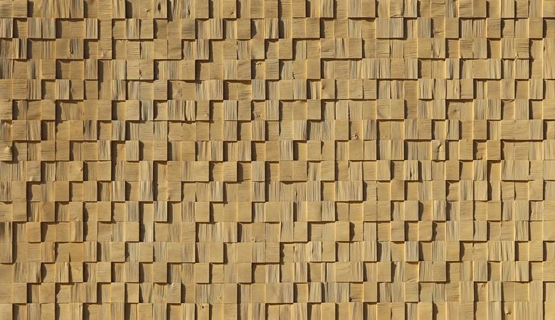 502-quadrato-casuale-quercia